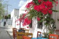 Traditional cafeteria tables below a vivid bougainvillea plant, Mykonos island