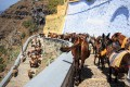 Donkey ride down to the old port od Fira town, Santorini island