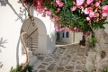 Whitewashed slated alley with flowers, Santorini island
