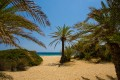Exotic beach Vai, one of the largest attractions of the Mediterranean island of Crete