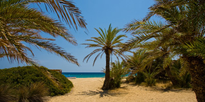 The palm beach of Vai is one of the largest attractions of the Mediterranean island of Crete